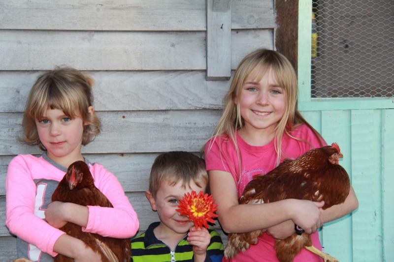 kids&chickens16