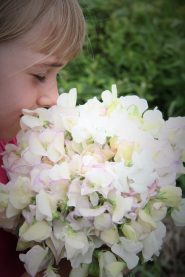 sweet pea smell