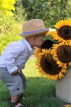 giantsunflowerboy